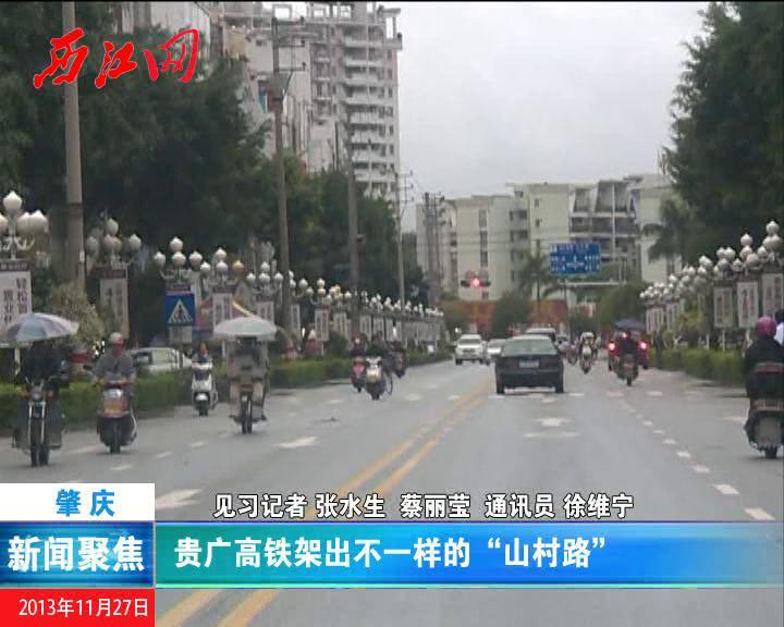 """贵广高铁架出不一样的""""山村路"""""""