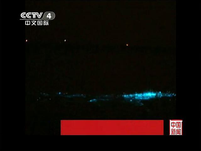 广东珠海:海水呈现蓝色荧光
