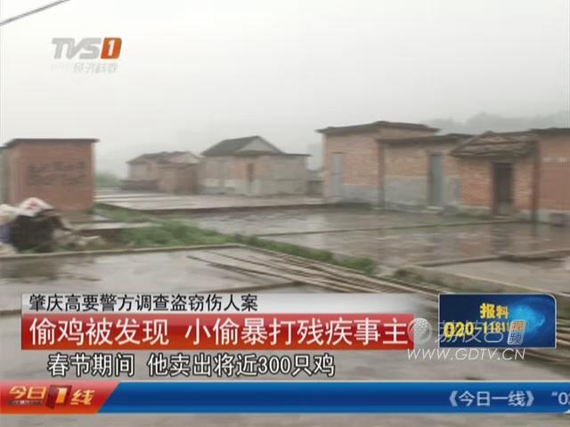 肇庆高要警方调查盗窃伤人案:偷鸡被发现 小偷暴打残疾事主