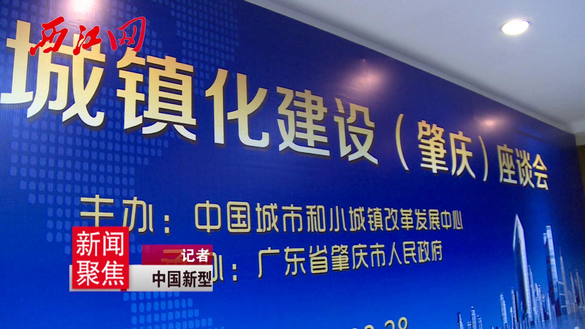 中国新型城镇化建设(肇庆)座谈会在肇庆新区召开