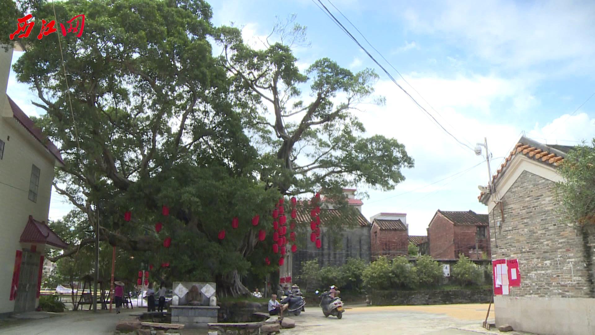 鼎湖蕉园村---注重生态保护和文化传承  示范引领新农村建设