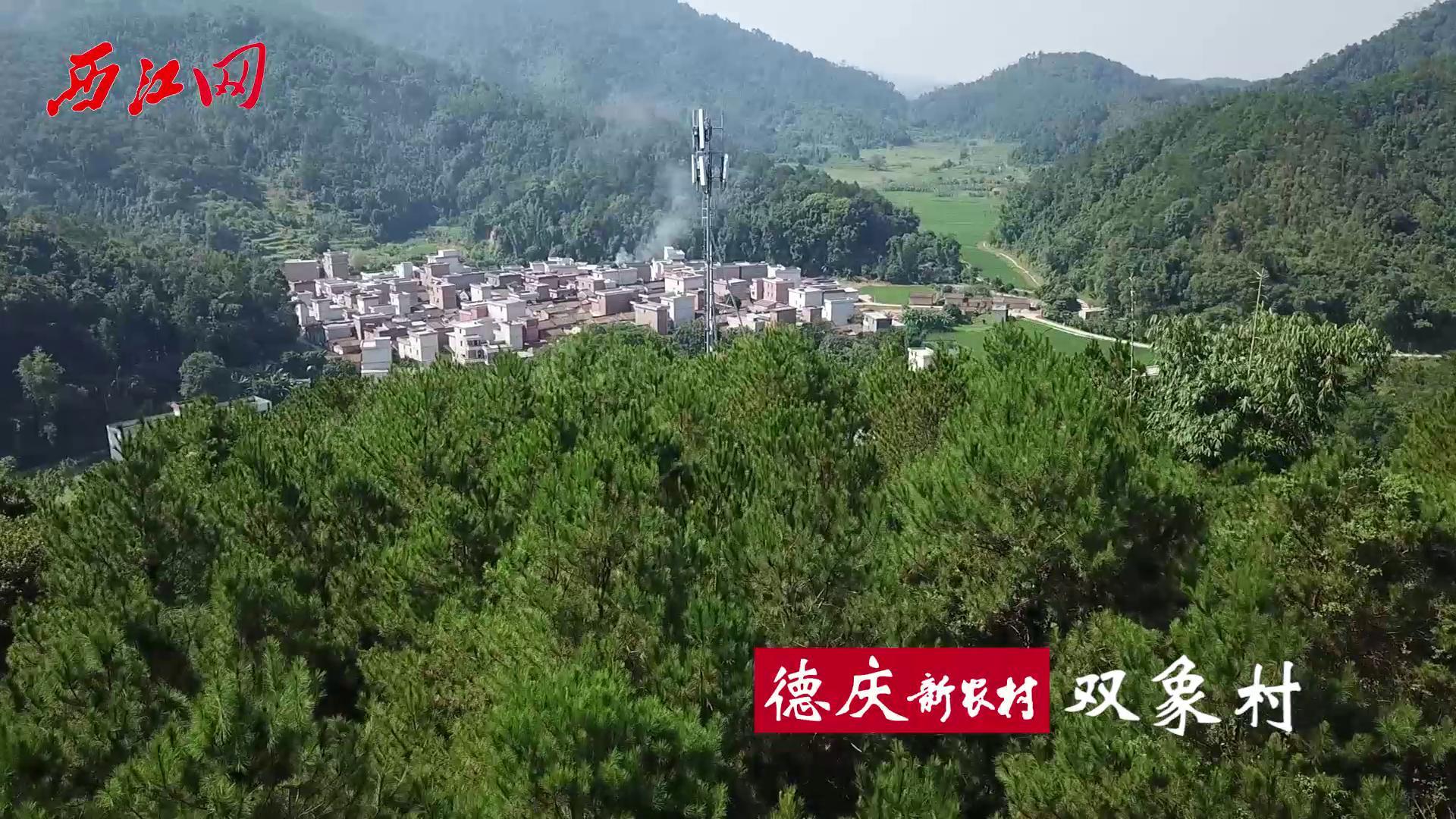 航拍新农村之德庆武垄双象村