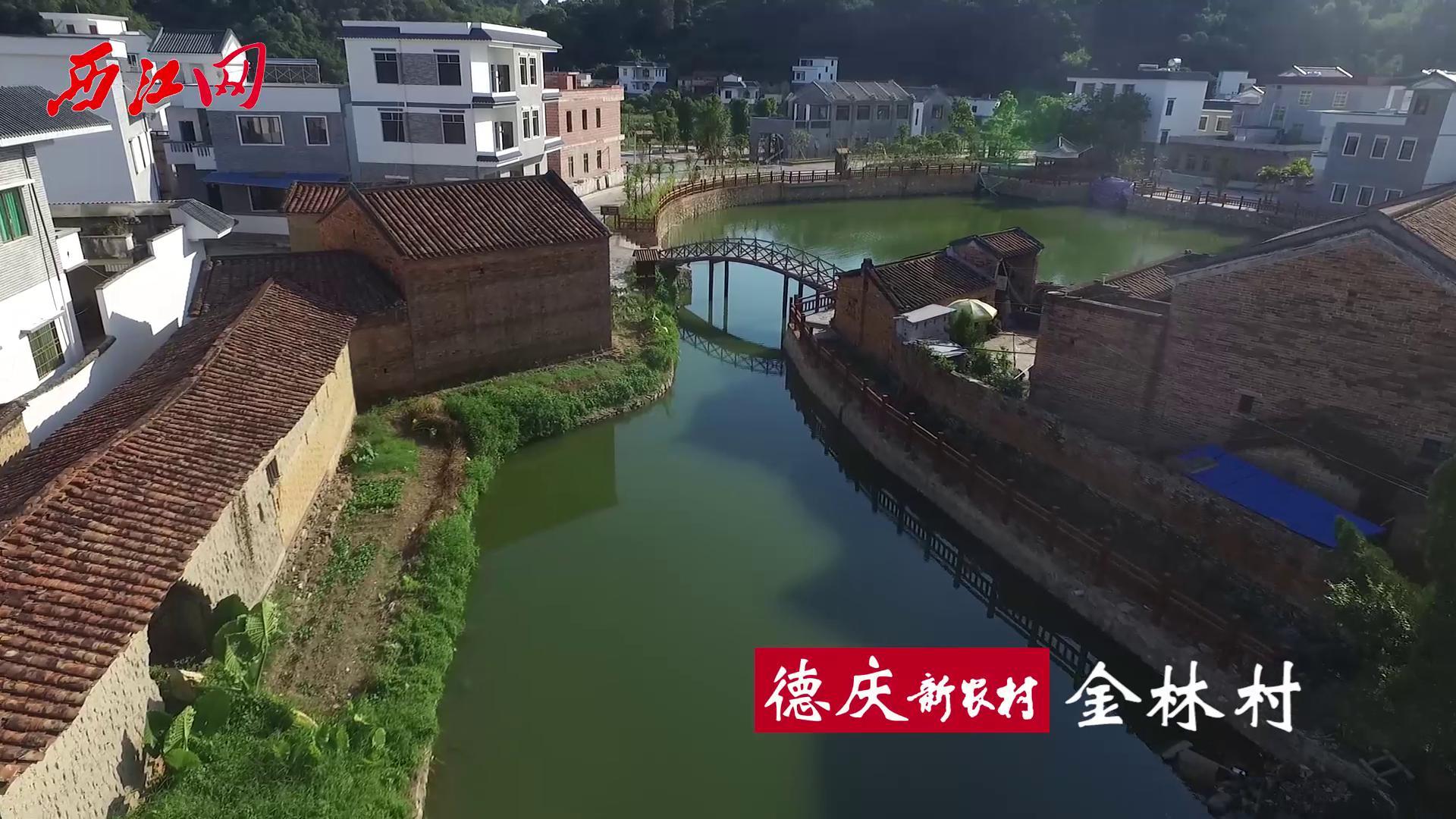 航拍新农村之德庆金林村