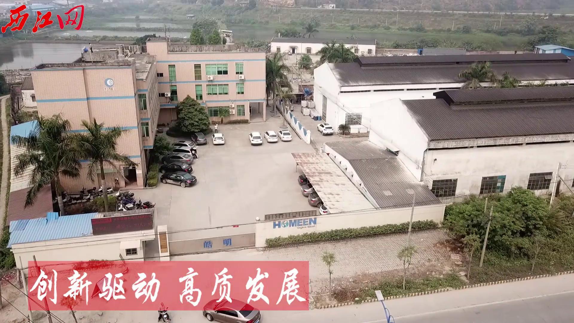 鼎湖:创新驱动打造高质量发展   启动生态治理实现绿富同兴