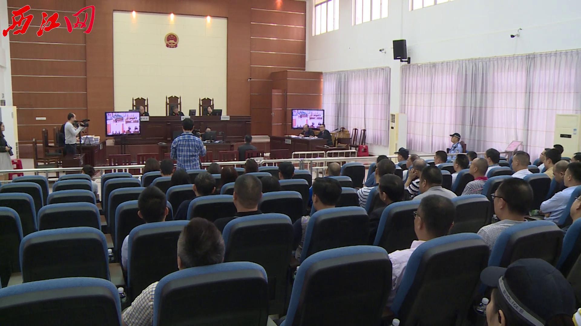 现场听审警示活动在高要区人民法院举行