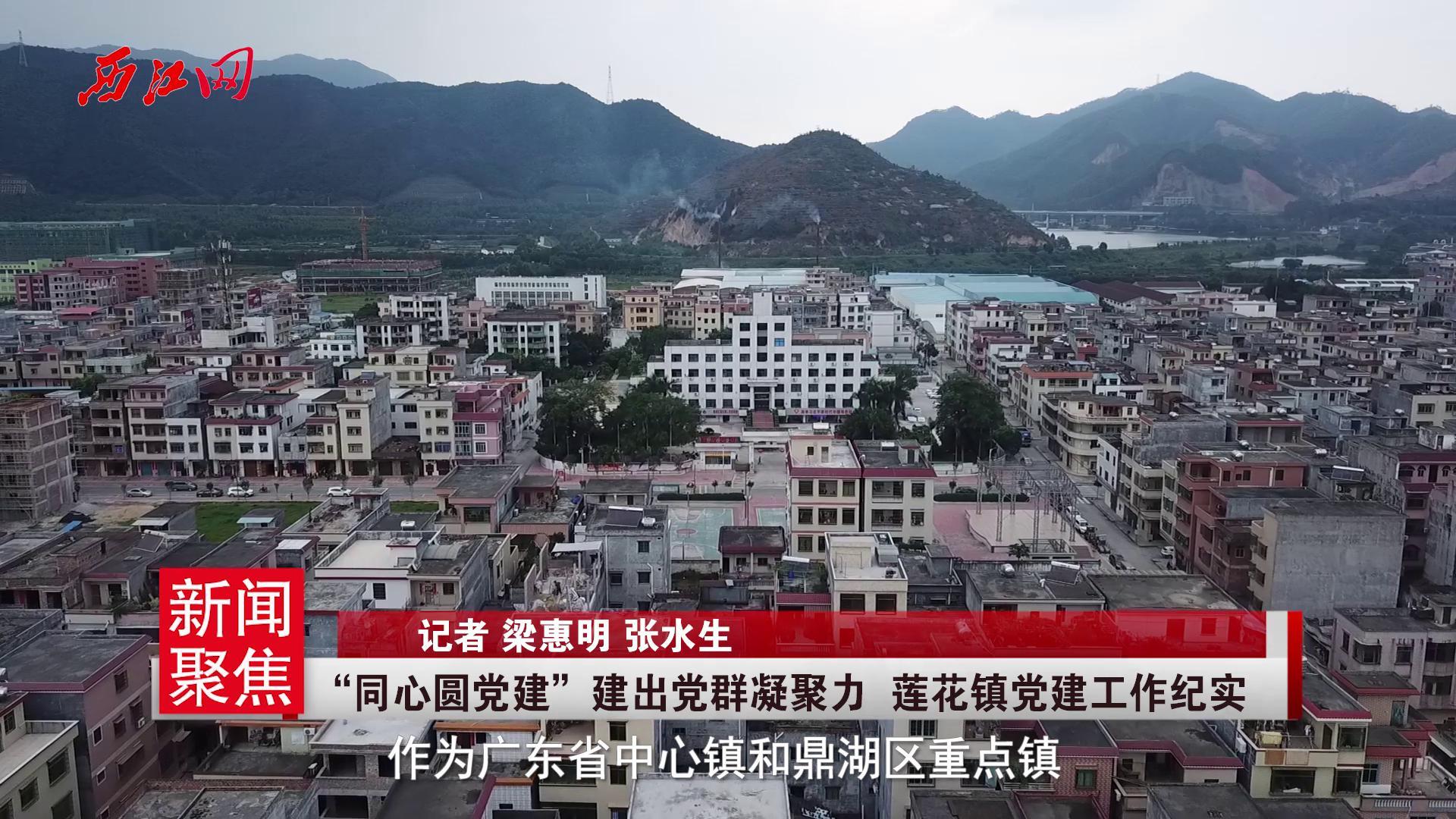 鼎湖区莲花镇党建工作纪实:以基层党建凝聚发展合力