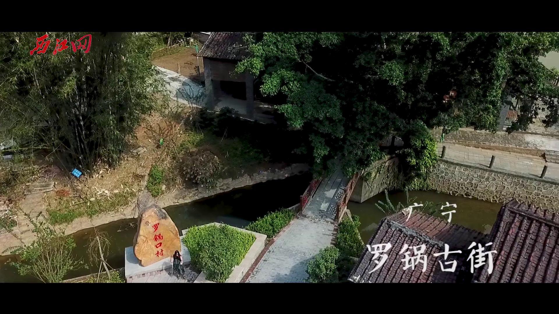 竹海翠竹--广宁新农村美景航拍