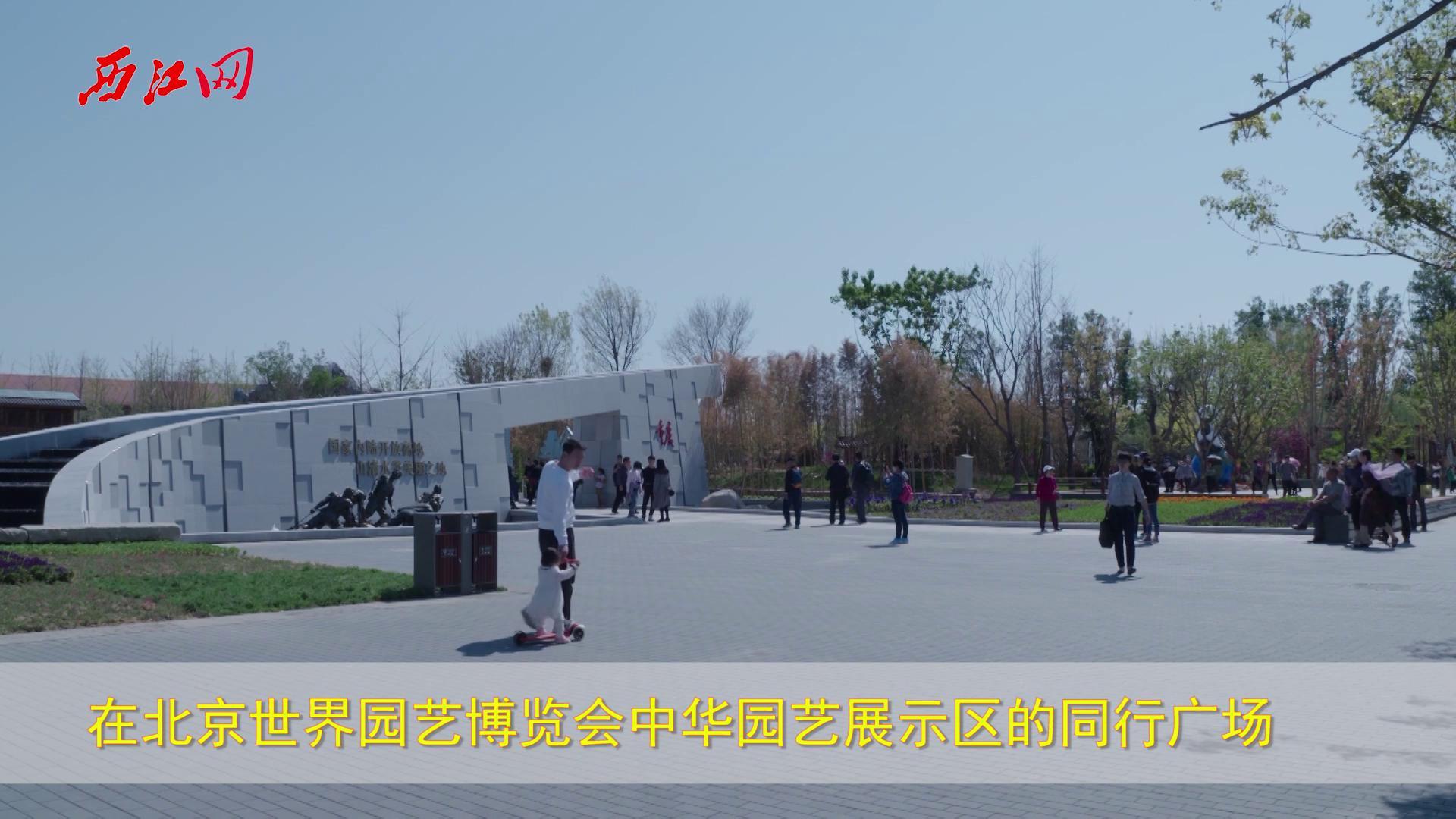 广宁十吨重广绿玉亮相北京世园会