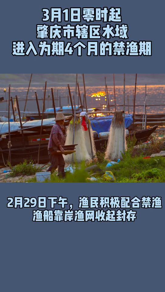 3月1日起肇庆辖区水域全面进入为期4个月的休渔期