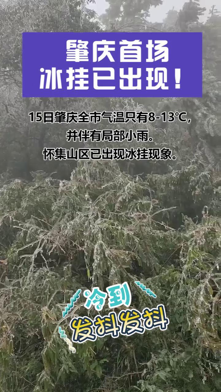 (抖音)肇慶首場冰掛已出現