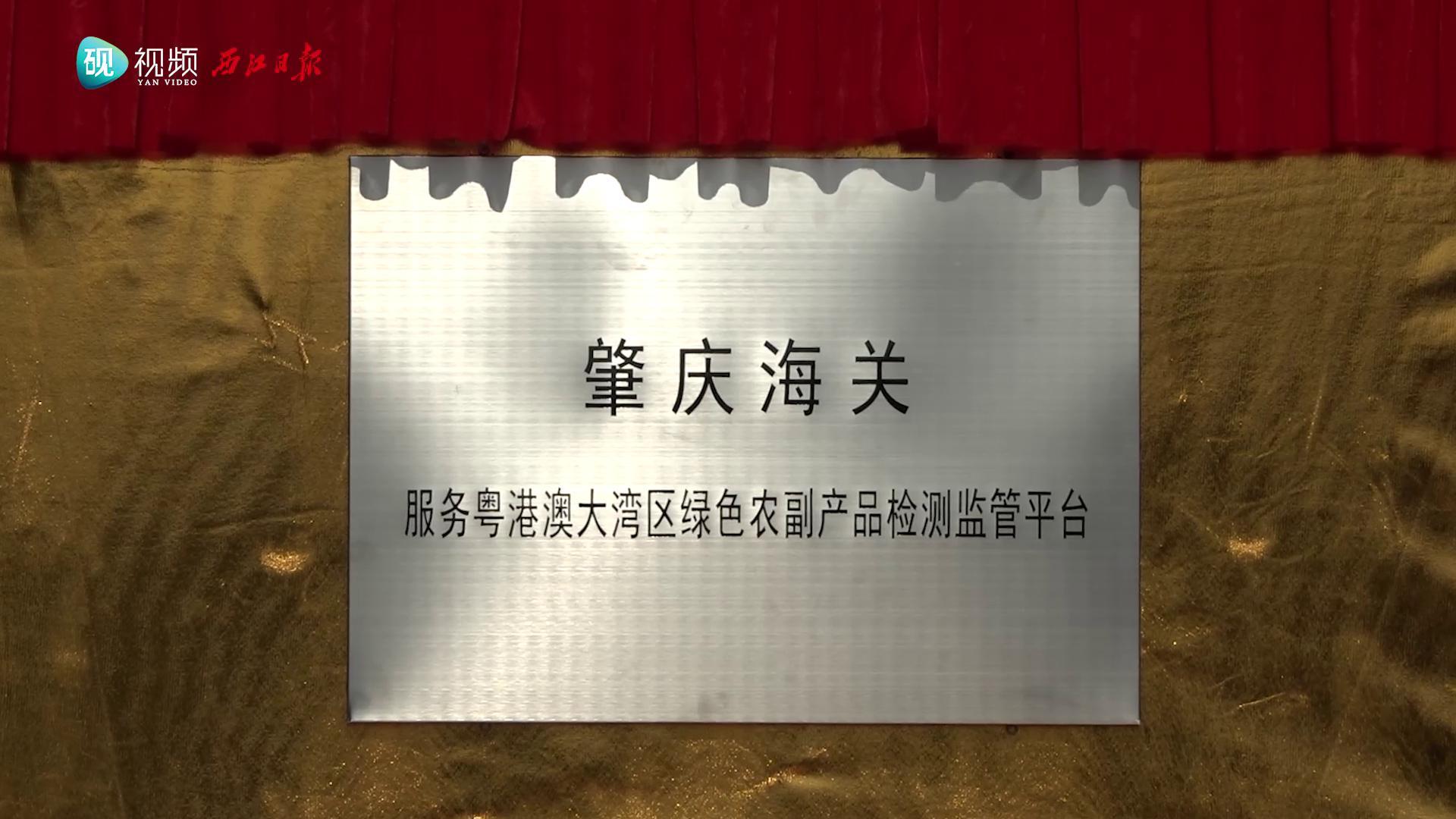 怀集县掀起产业招商落地新热潮