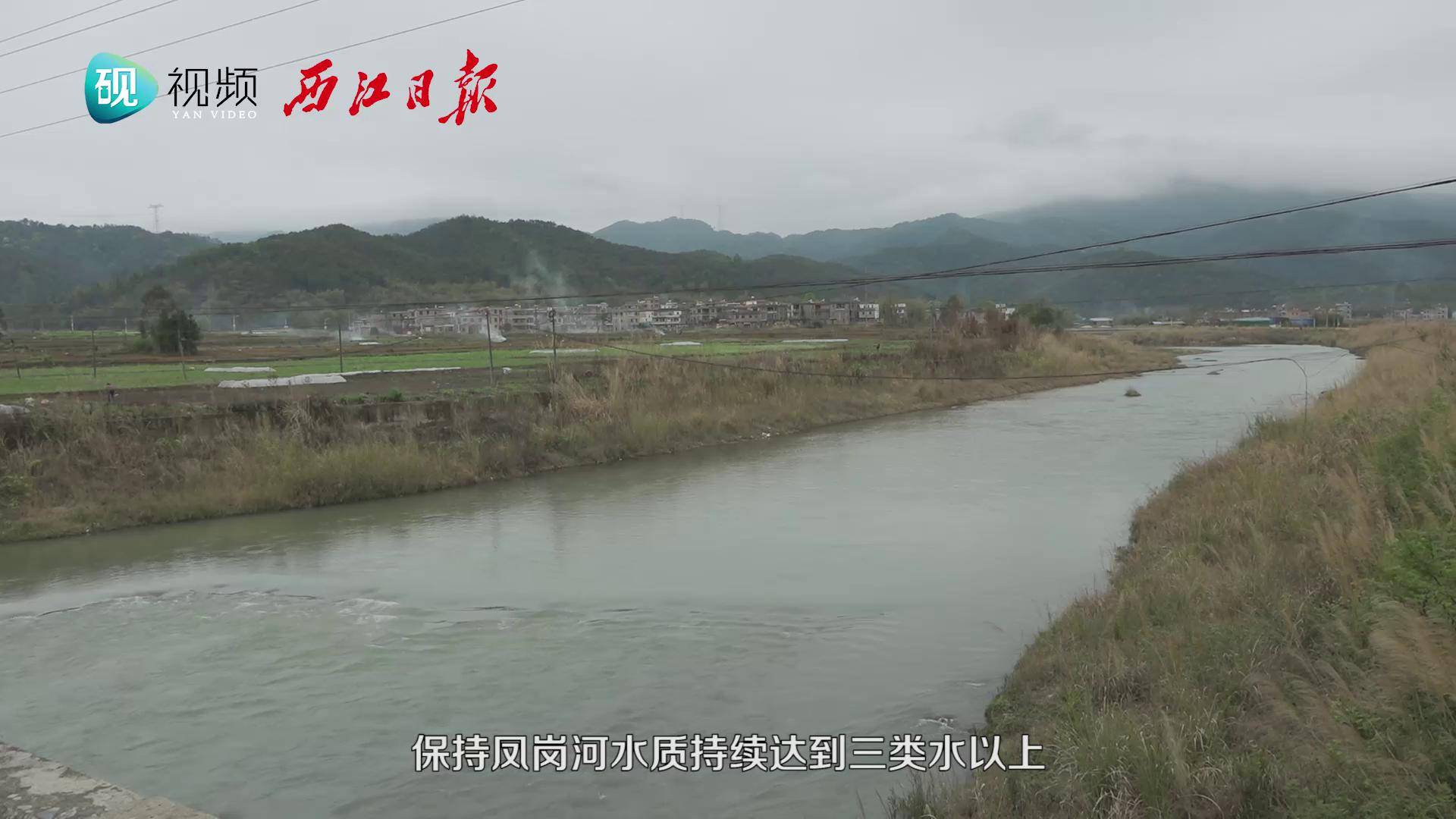 怀集凤岗河重现水清景美
