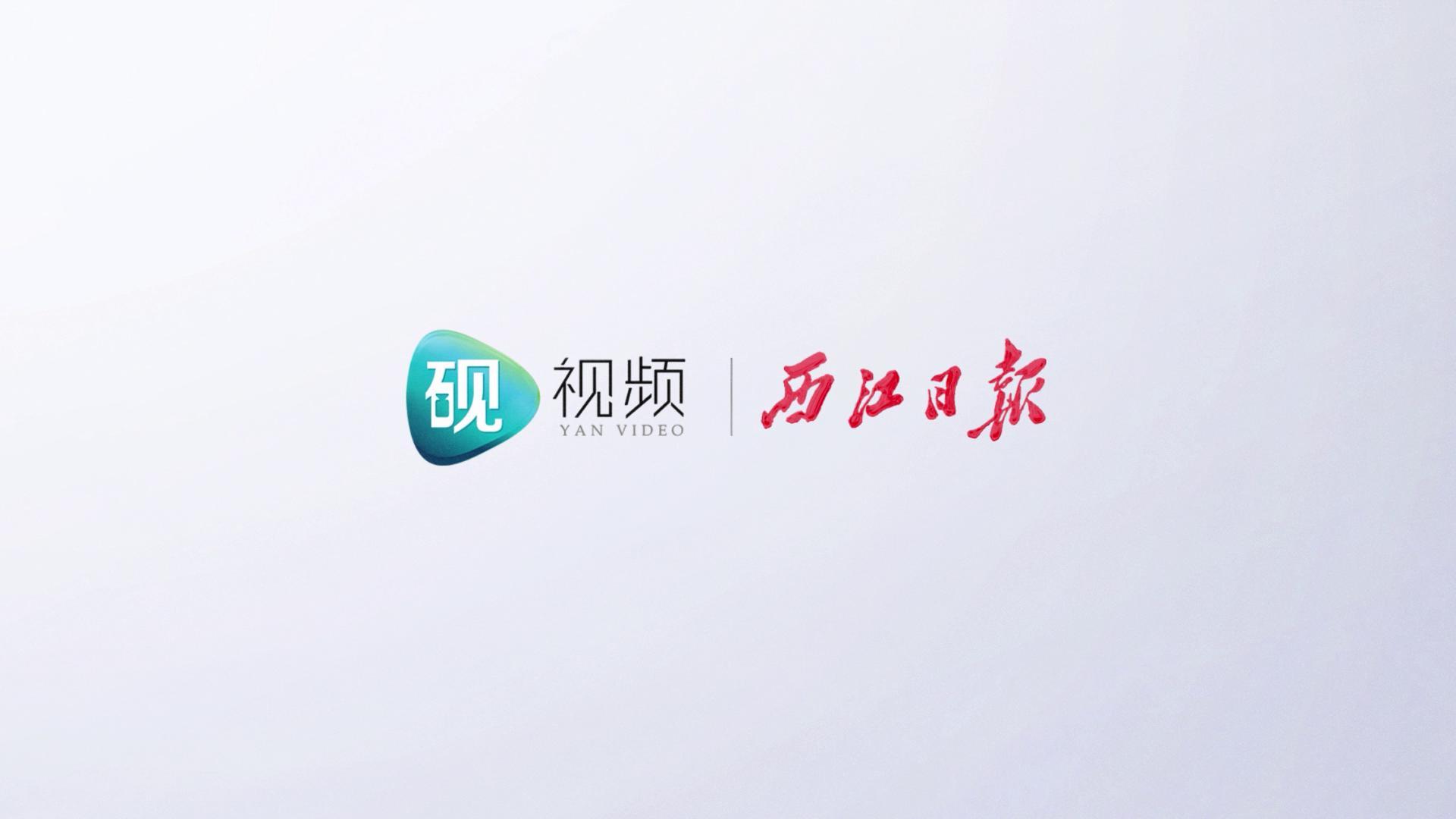 """肇庆星湖春分版""""卧佛含丹"""""""
