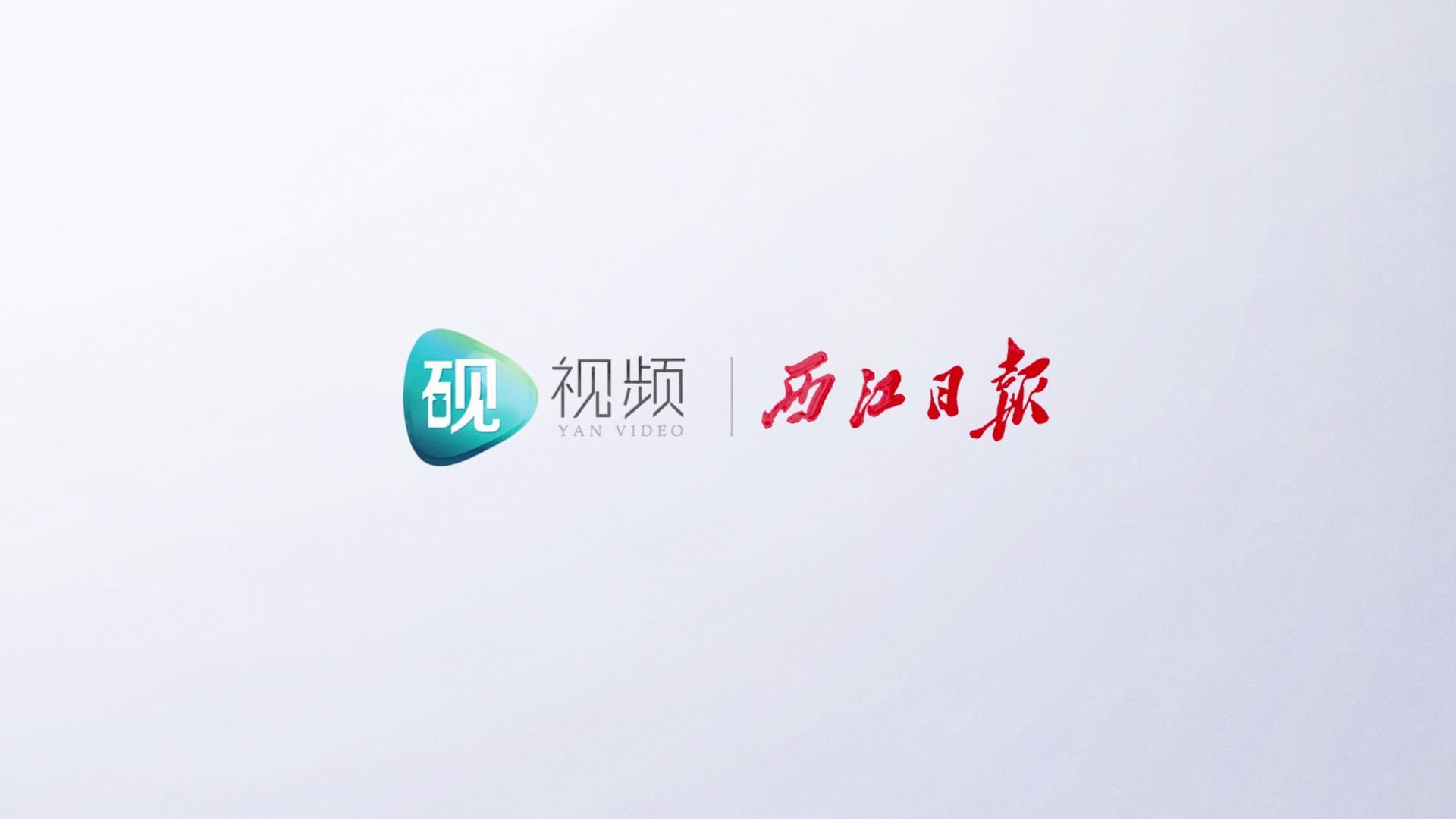 西江大桥:七彩霓虹 灿若星河